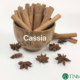Photos Of Cassia – click here to view and download